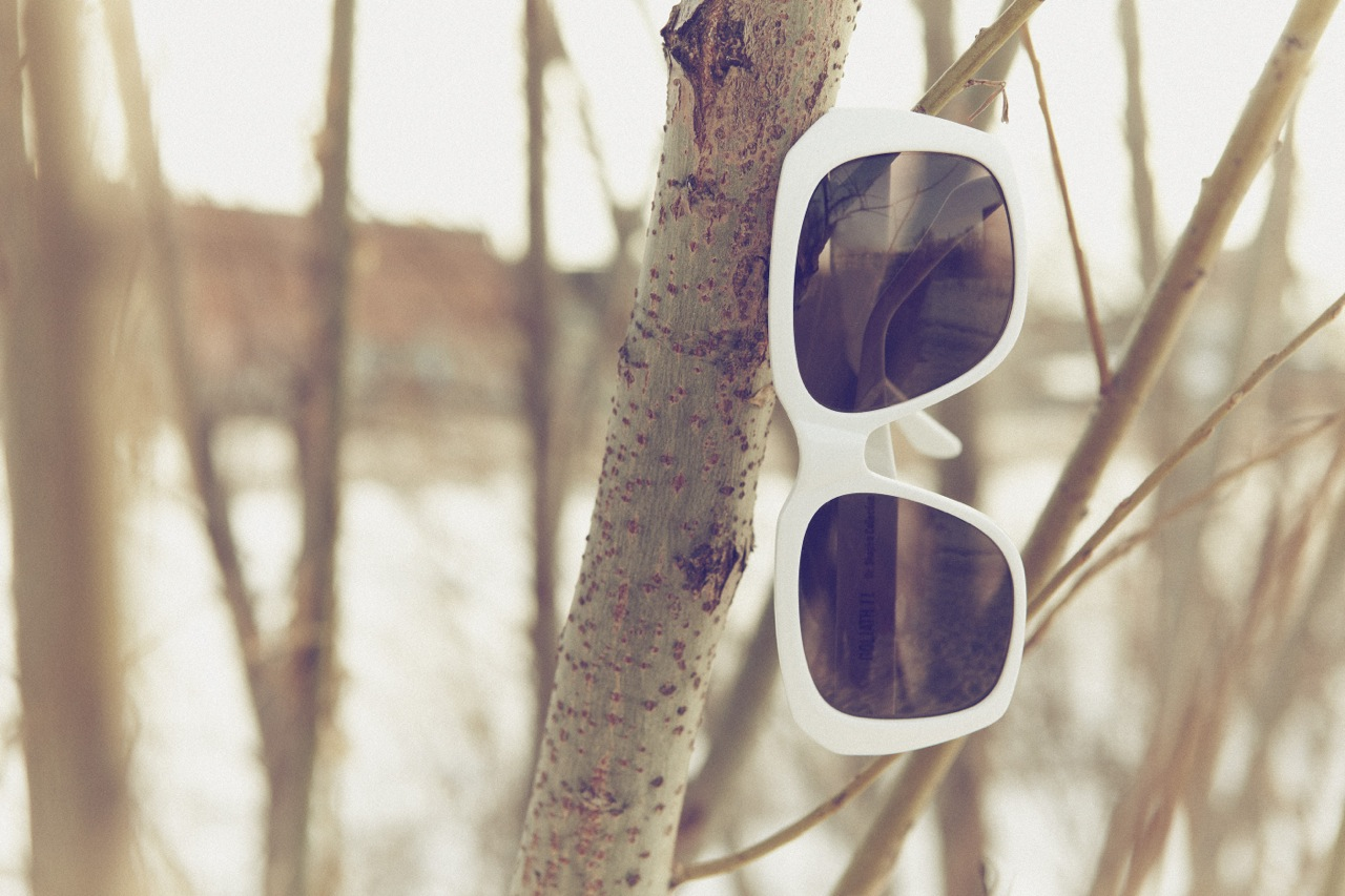 Snow Glasses 2017