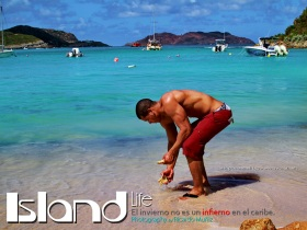 ISLAND LIFE by Ricardo Muniz 00 title page Deilin JPEG