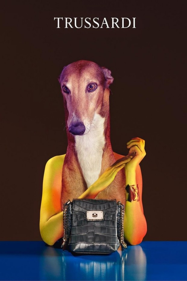 Trussardi-Handbags-2014-Fall-Winter-11-682x1024-1