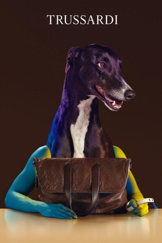 Trussardi-Handbags-2014-Fall-Winter-9-682x1024-1